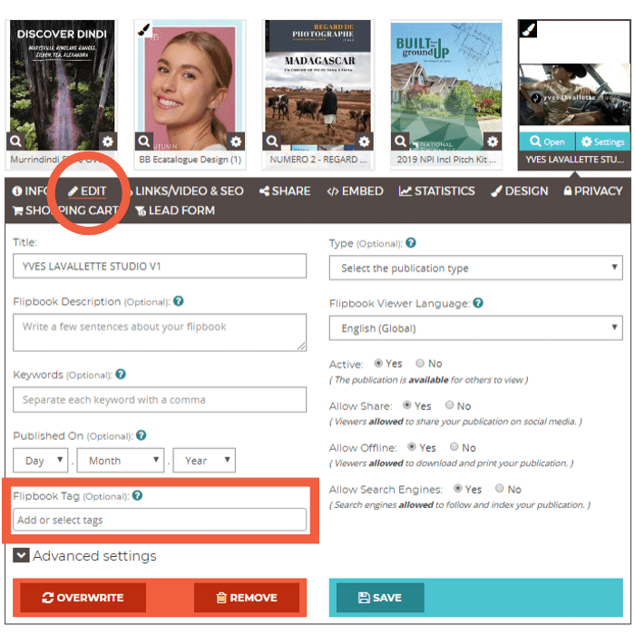 Choose a publication from dashboard, click Edit tab and add tags under Flipbook Tag field